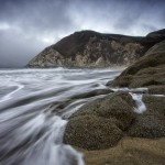 Grey Whale Cove