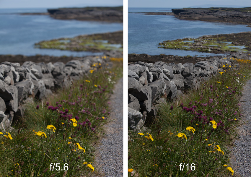 Example of different depths of field from different apertures (f/5.6 v. f/11)