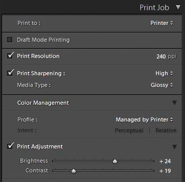 Print Job box in Lightroom Print module