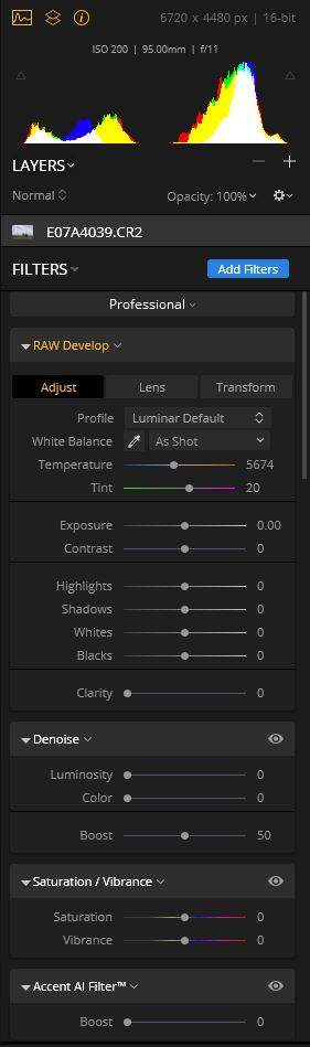 A Closer Look at the Luminar controls (shown using the Professional Workspace)